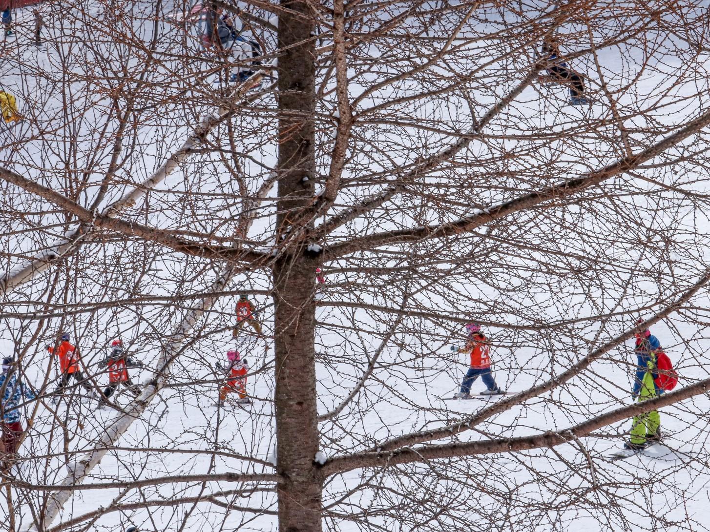 スキーキッズ(2019年12月~2月下旬)